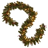 Crestwood Spruce Garland with Silver Bristle