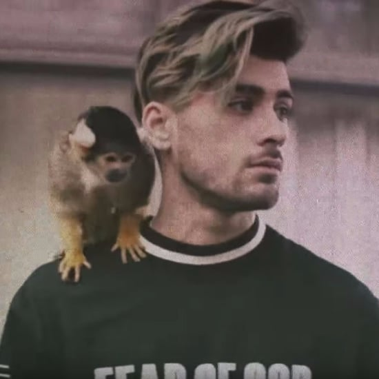 "Zayn Malik's ""Still Got Time"" Music Video"