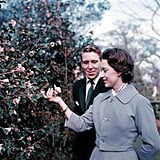 Princess Margaret and Antony Armstrong-Jones Engagement Announcement, February 1960