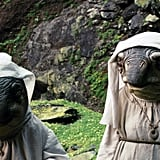 The Fish Nuns From Star Wars: The Last Jedi