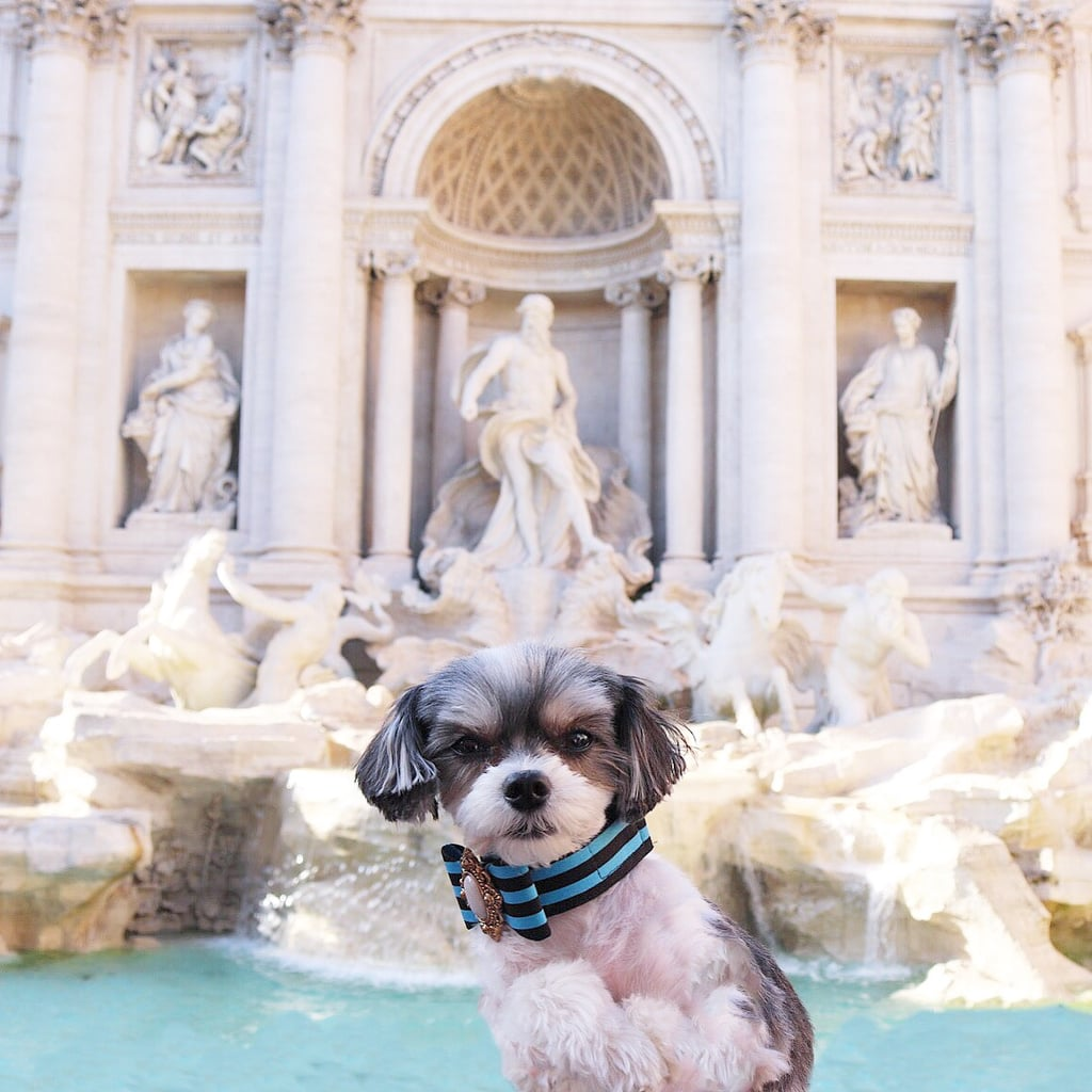 Sightseeing was a must in Rome and the Trevi Fountain was my first stop to throw a coin in over my left shoulder of course!