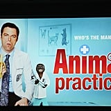 Animal Practice will be on this Fall on NBC.