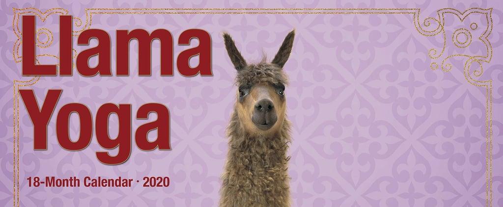 An Adorable Llama Yoga Calendar For 2020