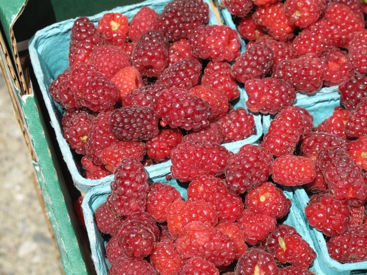 Photo Gallery: Tayberries And Other Berries