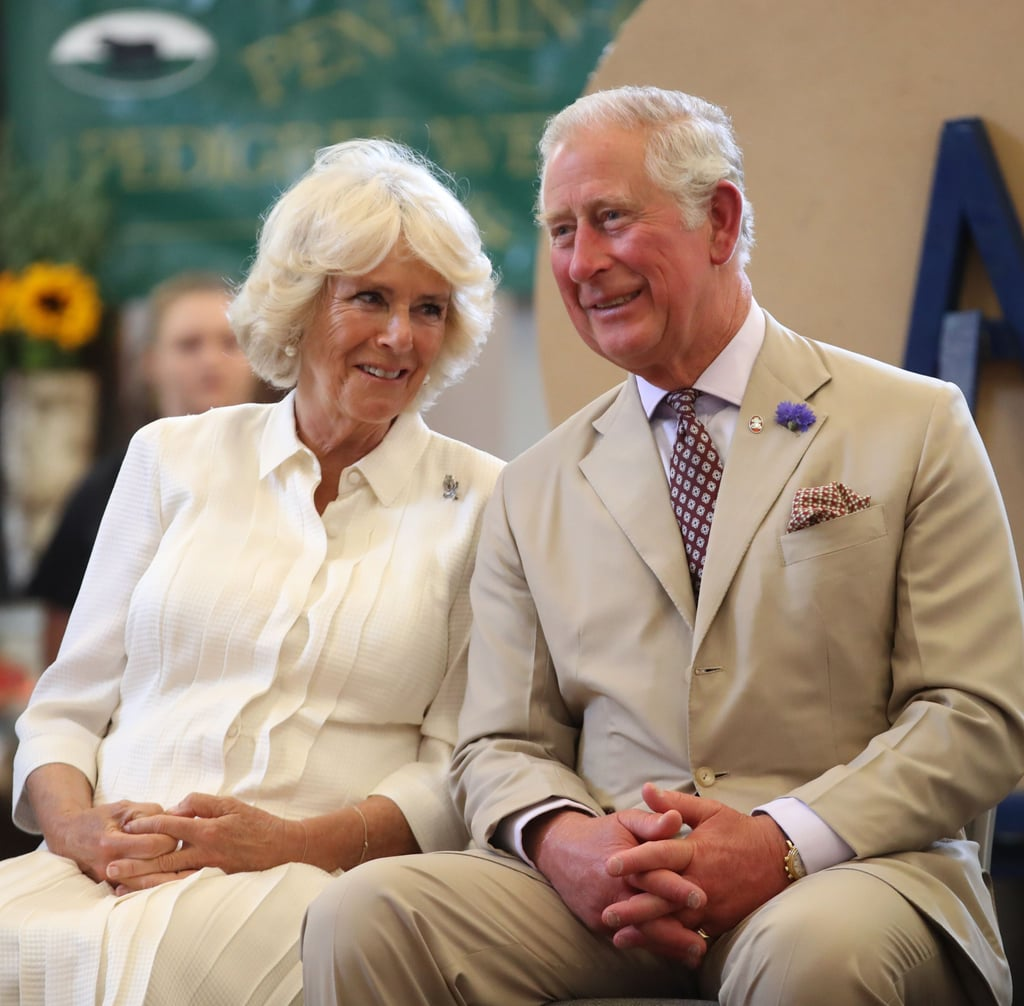prince charles and camilla relationship facts popsugar celebrity australia prince charles and camilla relationship