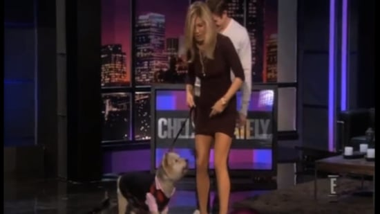 Video of Jennifer Aniston and Norman on Chelsea Lately 2011-02-04 14:04:00
