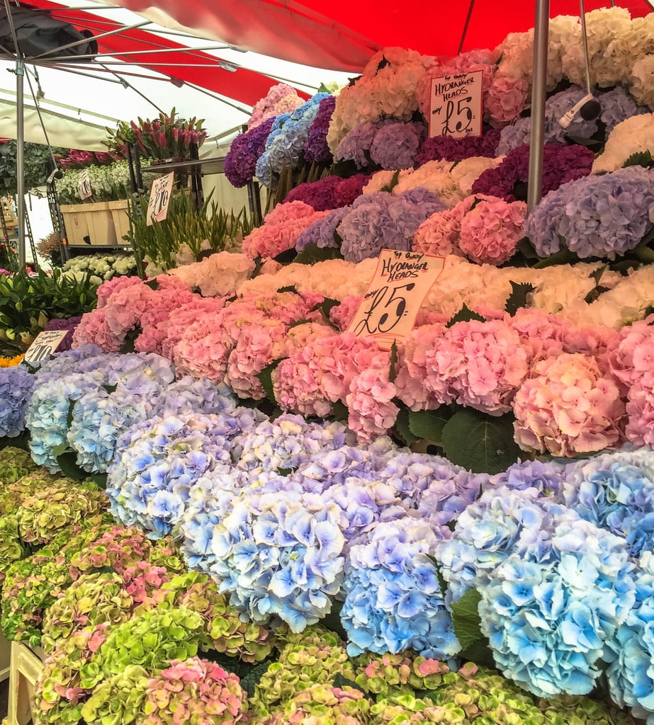 Take in the intoxicating aromas at the Columbia Road Flower Market.