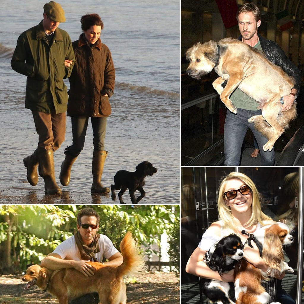 Happy National Pet Day — See the Stars Who Love Their Pups