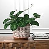 Rivet Modern Geometric Ceramic Indoor Planter Flower Pot