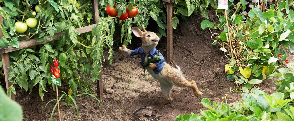 Peter Rabbit Food Allergies Backlash