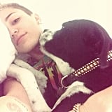 Miley Cyrus showed off a natural makeup look . . . and her cute pooch. Source: Instagram user mileycyrus