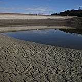 Cupertino's Stevens Creek Reservoir has dangerously low water levels.