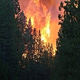 Bright flames from the Rim Fire could be seen from the highway.
