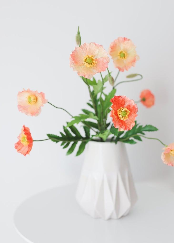 Peach Coral Silk Poppy Bush