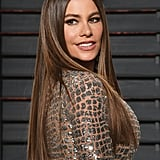 Sofia Vergara's Dark Brown Hair