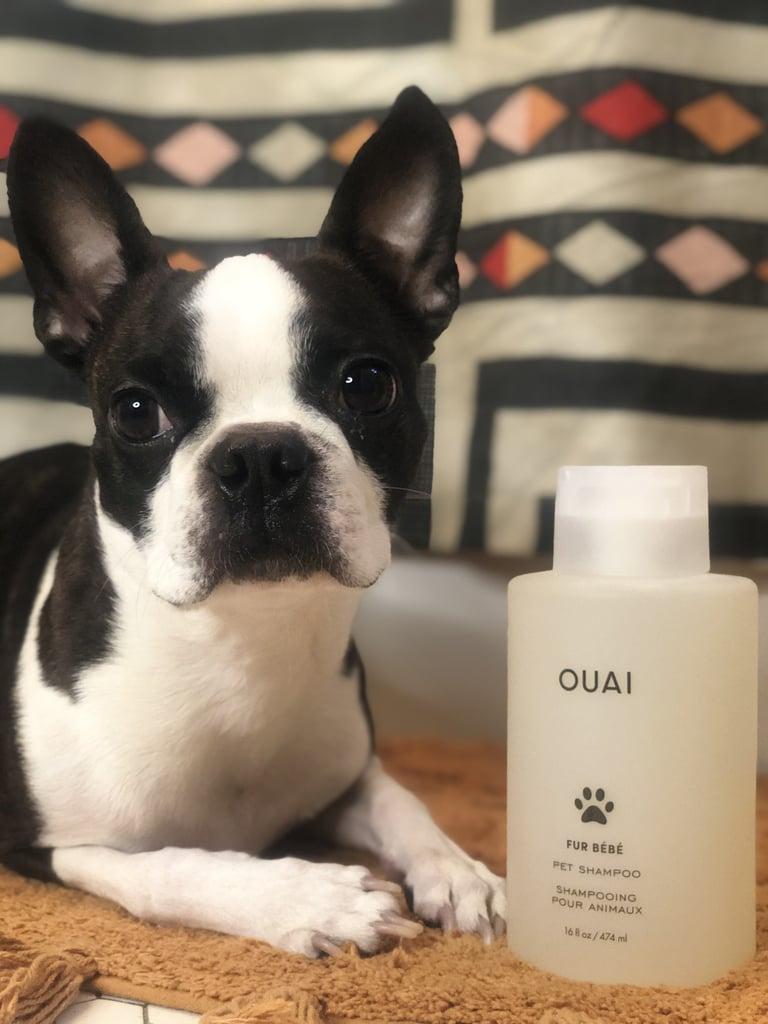 What's Inside Ouai Fur Bébe Pet Shampoo