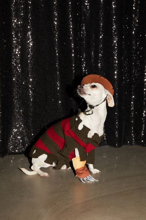 Halloween may be a human holiday, but even our four-legged friends want to get in on the fun every now and then, and this mini Freddy Krueger costume is just the outfit to make even the tiniest pup feel spooktacular on Halloween night. Based off of the 1984 classic horror film A Nightmare on Elm Street, this villainous costume comes with the signature claw glove, a brimmed hat (with drawstrings to keep it on your pup's head), and, of course, a stylishly tattered striped sweater à la Freddy Krueger.  Available in sizes small (6-10 pounds), medium (11-20 pounds), large (21-29 pounds), and extra large (30-45 pounds), the dastardly look fits just about any doggo, so you and your pet can have matching Halloween costumes. Keep scrolling to take a closer look at this surprisingly adorable Freddy Kreuger Dog Halloween Costume ($36), and snag a Halloween outfit for your own puppy ahead.