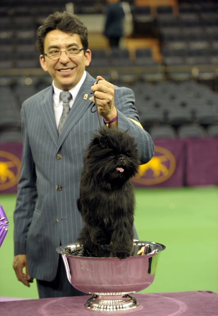 Handler Ernesto Lara was all smiles at the dog show.