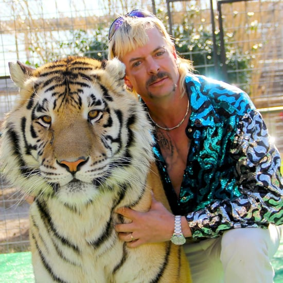 What Eyeliner Did Joe Exotic Wear on Tiger King?