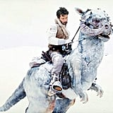 What's better than a celebrity caught in an awkward moment? A photoshopped celebrity caught in an awkward moment! The Sad Keanu Tumblr takes submissions of Keanu's sad face photoshopped onto . . . well, just about anything. Here, not even riding an awesome white tauntaun will cheer up poor Sad Keanu.