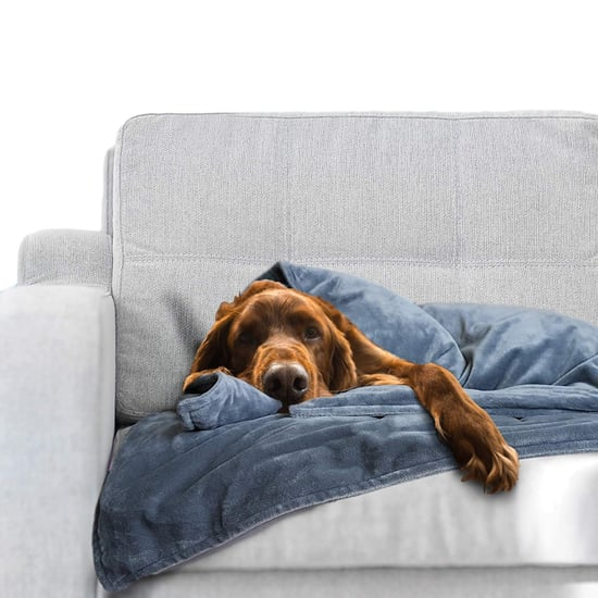 Best Weighted Blanket For Pets