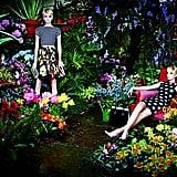 Alice + Olivia Spring 2014