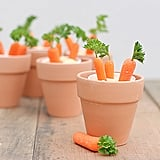 Carrot Patches