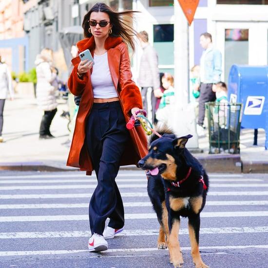 Emily Ratajkowski's BlankNYC Rust Vegan Leather Jacket