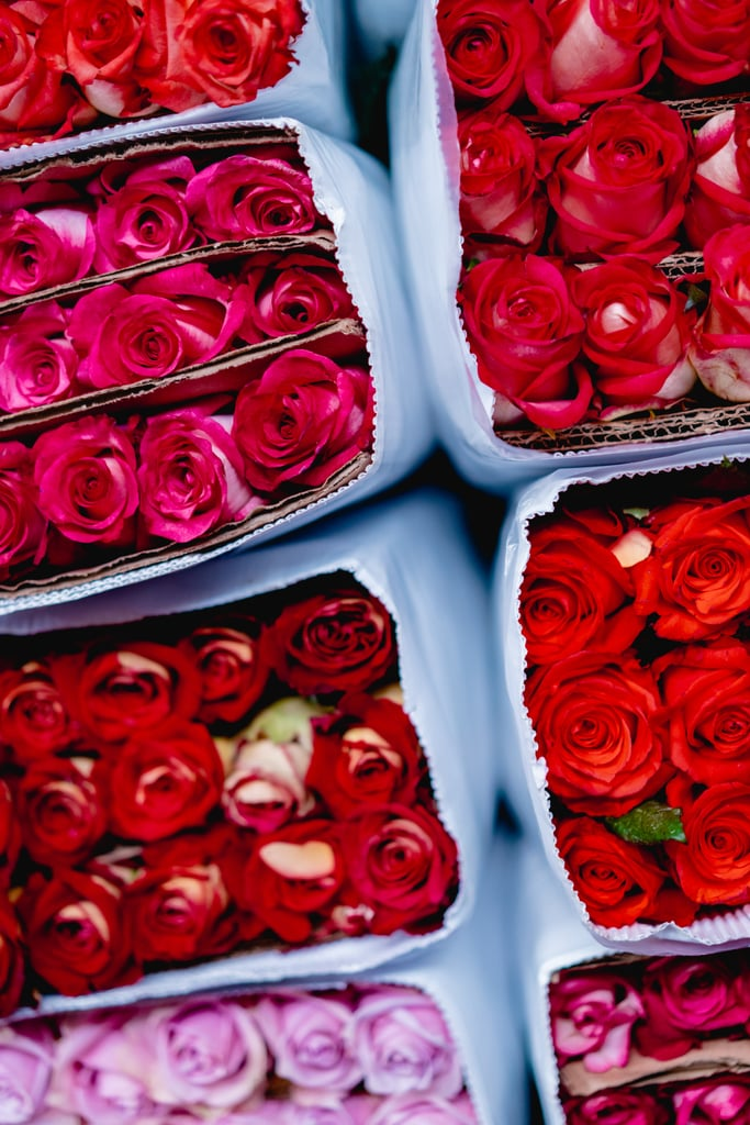 Valentine's Day Roses iPhone Wallpaper