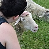 Farm Sanctuary Pictures