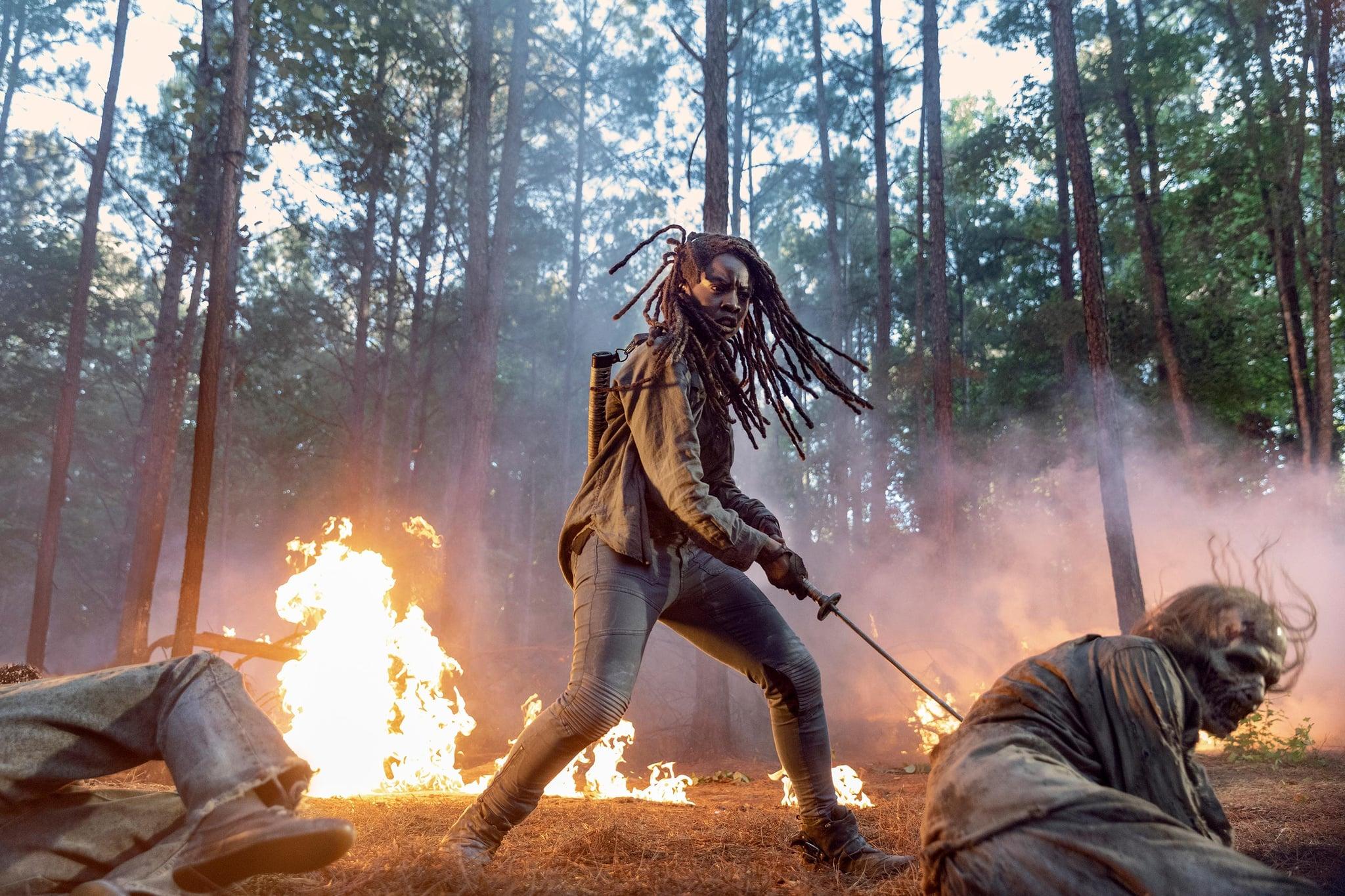 Danai Gurira as Michonne; group - The Walking Dead _ Season 10 - Photo Credit: Jackson Lee Davis/AMC