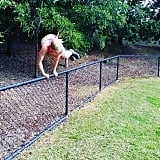 Over-the-Fence Burpees