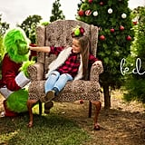 Photographer Stages Grinch-Themed Photo Shoot