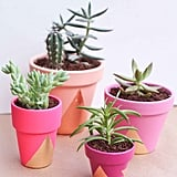 12. Decorative Planters