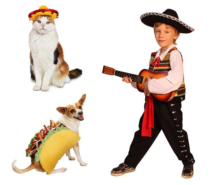 Mariachi Band and a Taco