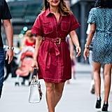 Priyanka Chopra's Diane Von Furstenberg Dress