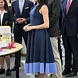 Meghan Markle's Roksanda Dress October 2018