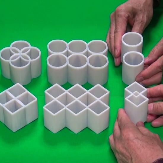 Ambiguous Cylinder Optical Illusion