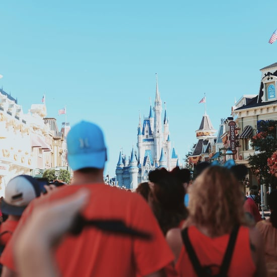 Tips For Going to Disney World on a Busy Day