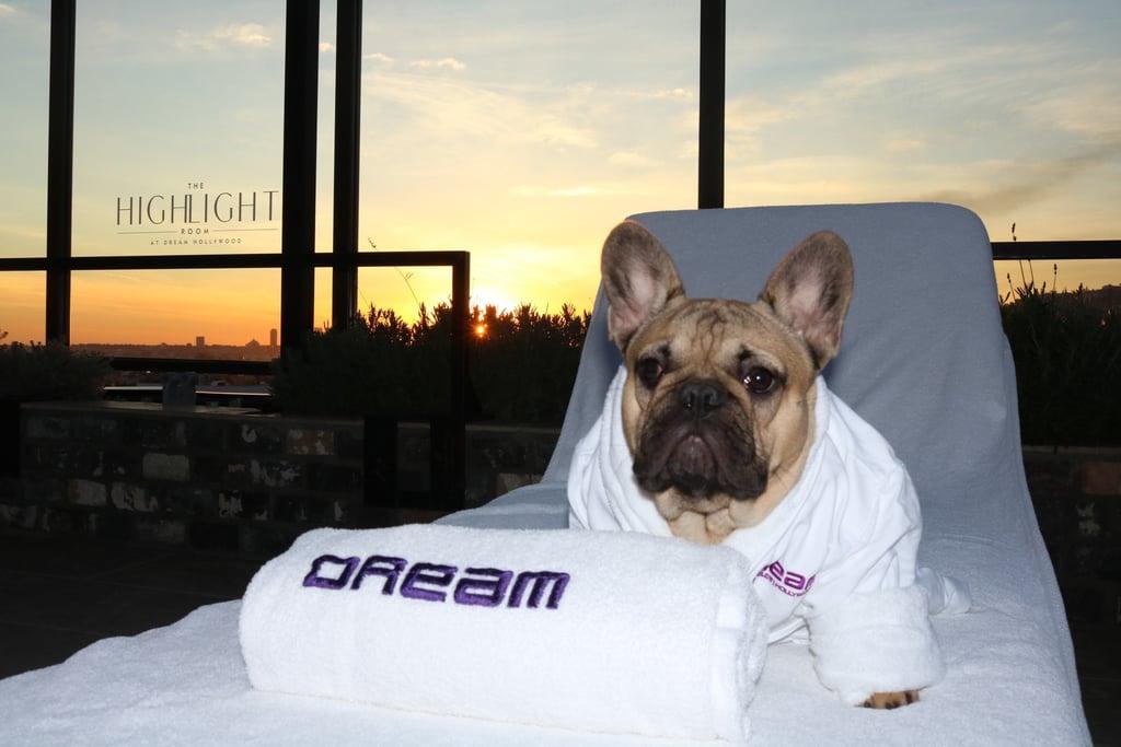 Los Angeles: Dream Hotel Hollywood