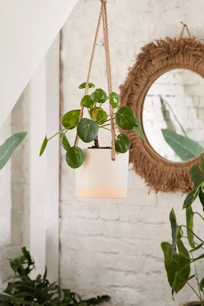 "Cylinder Ceramic 6"" Hanging Planter"