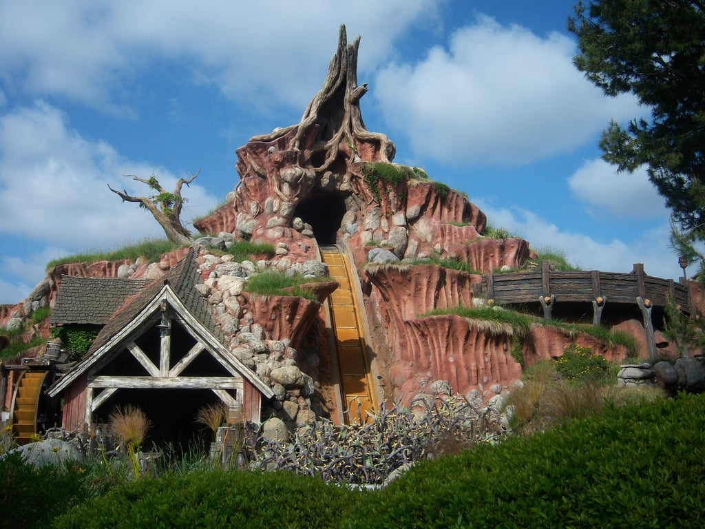 Ride every roller coaster in a Disney park together in one day.