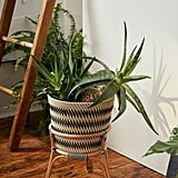 Bistro  Rattan Planter and Stand