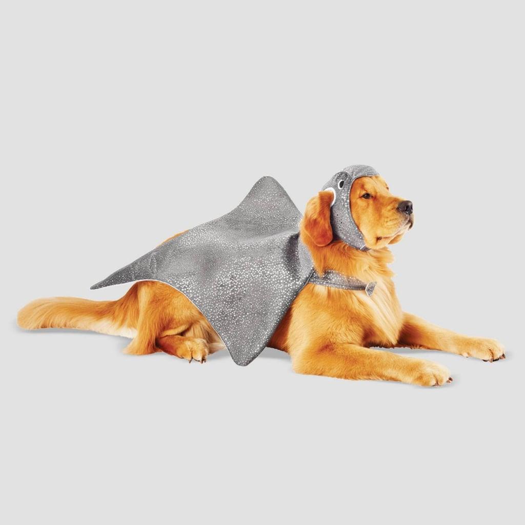 Stingrey Halloween Dog Costume