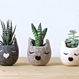 Cat Head Planter ($58)