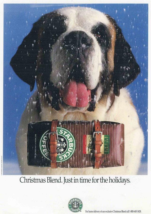 Starbucks's St. Bernard Ad