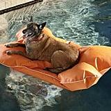 Christine Pup Pool Mat