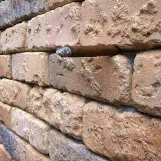 Brick Wall Optical Illusion
