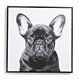 Frenchie Framed Canvas Wall Art