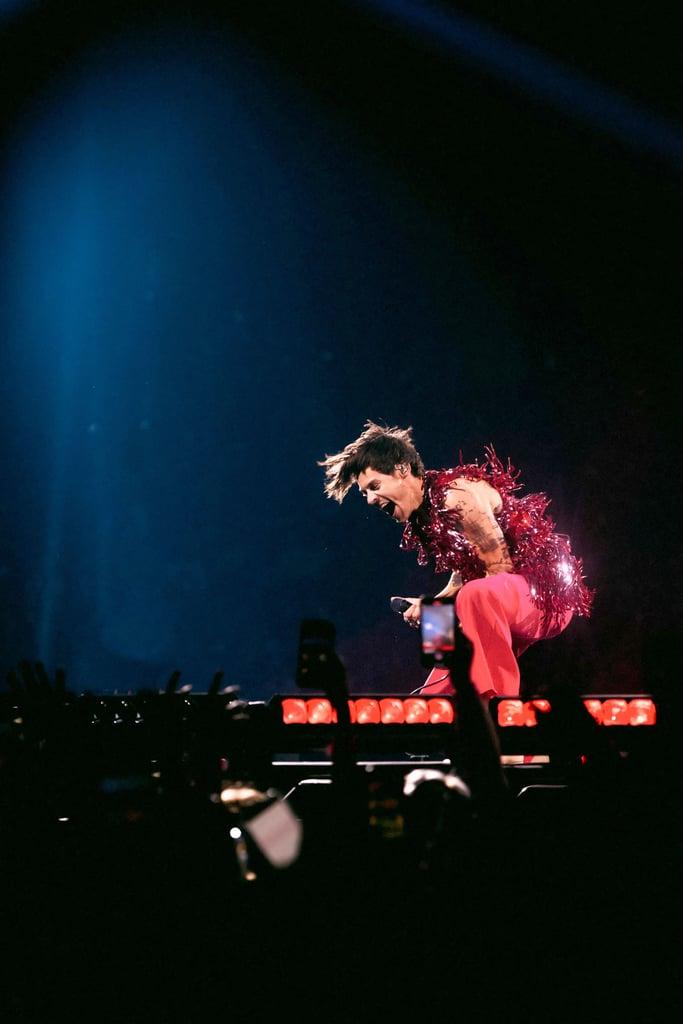 Best Harry Styles Love on Tour Videos